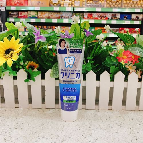 日本狮王洁净防护牙膏(草本薄荷)130g